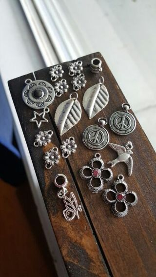 Assorted Charms & Flower Connectors (Winner Takes All)