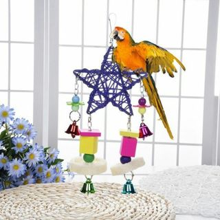 Color Mixed Wood Parrot Swing Pentagon Wind Bell Bird Toy Rattan Bite Supplies