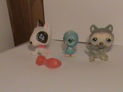 Littlest Pet Shop! (LPS)