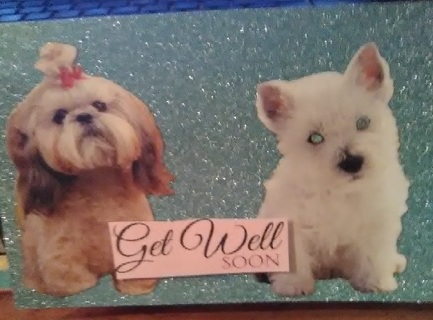 New Size - Get Well - Design Blank Card with Envelope