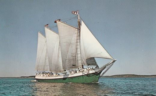 Vintage Unused Postcard: The Victory Chimes off Maine Coast