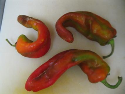 10+ Hatch Pepper Seeds (Hatch)?