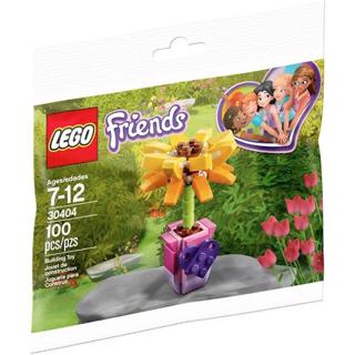 LEGO Friends Friendship Flower #30404 Poly Bag ~ 100 Pieces ~ NEW ~ NIP