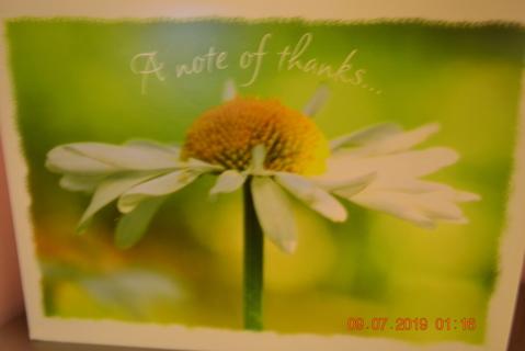 "****""BEAUTIFUL SINGLE FLOWER"" THANK YOU CARD W/MATCHING ENVELOPE***FREE SHIPPING"