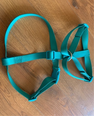 Harness Heavy Duty for Large Dog Never Used