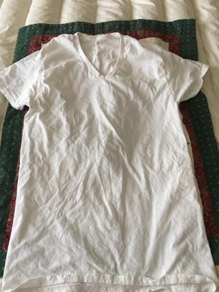 Men's Fruit of the Loom size small v-neck T-shirt white