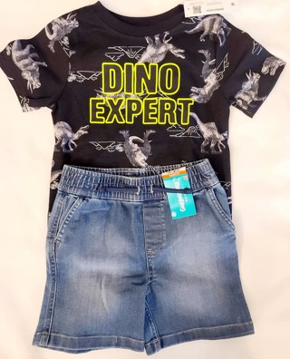 BOYS 2 PIECE SIZE 2 T-SHIRT & WITH SHORTS***TO CUTE***