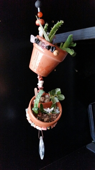 """Double Tier MINIATURE HANGING FAIRY GARDEN (Over 10 Live Succulents)  """"Spring Is Coming..."""""""