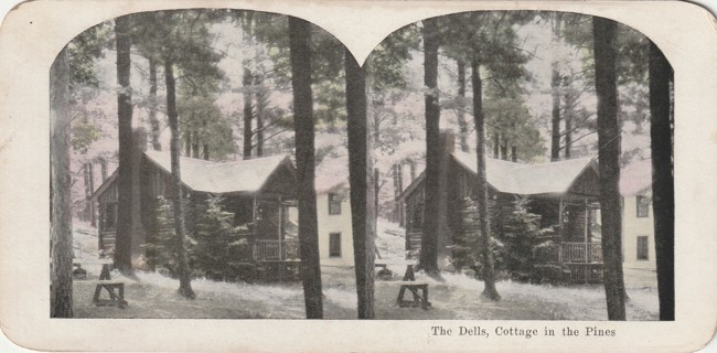 Vintage Early 1900-1920 Stereograph, Photo card: Wisconsin Dells: Cottage in the Pines