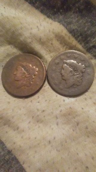 Lot of 2 US large cents