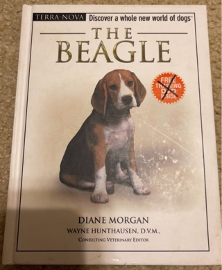 The Beagle by Diane Morgan