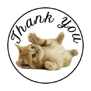 """48 """"THANK YOU"""" Color KITTEN CAT STICKERS ENVELOPE/PACKAGE SEALS LABELS ~ 1.2"""" round"""