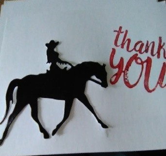 """3-Design """" Thank You """" Post Cards with Envelopes"""