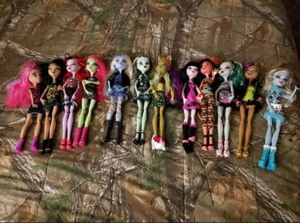 12 Monster High dolls. FREE SHIPPING!!