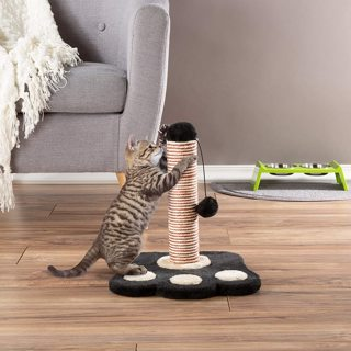 Cat Scratching Post **New LOW GIN! Last Chance!