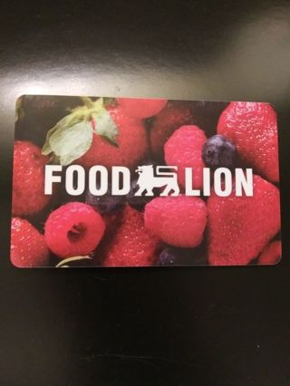 $25 Food Lion Gift Card