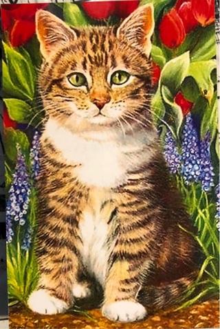 """Adorable Kitten - 5 x 4"""" MAGNET"""