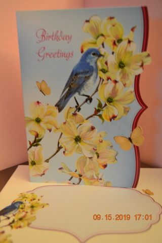 "****BLUE BIRD ""BIRTHDAY CARD"" W/MATCHING ENVELOPE***FREE SHIPPING"