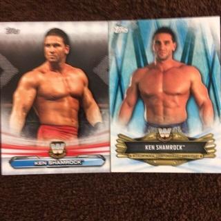 WWE Legends(Ken Shamrock)