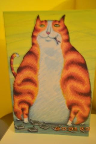 ****ORANGE CAT BLANK CARD W/ENVELOPE***FREE SHIPPING