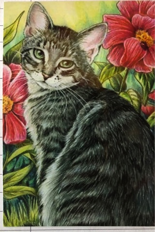 """TABBY CAT WITH FLOWERS - 5 x 3"""" MAGNET"""