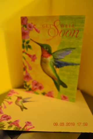 ****BEAUTIFUL GET WELL HUMMINGBIRD CARD W/MATCHING ENVELOPE***FREE SHIPPING