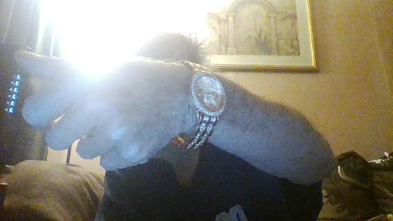 geneva watch 69.99 value