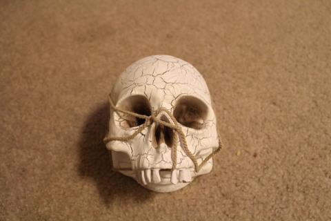 halloween deco skull