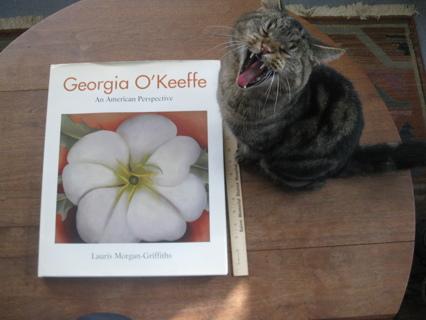 "Georgia O'Keeffe An American Perspective, HUGE Coffee Table Book 17"" X 14"", EX, FREE"