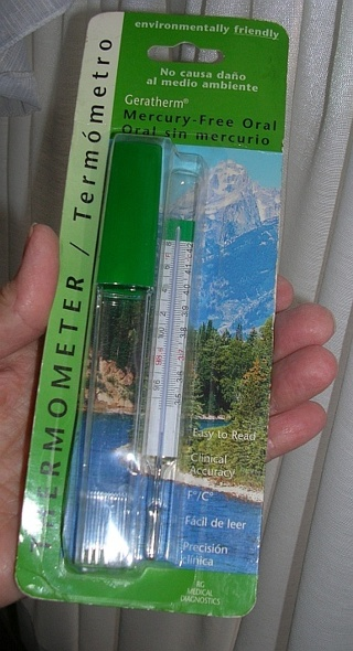 Mint in Package ~ Geratherm Mercury-Free Oral Thermometer