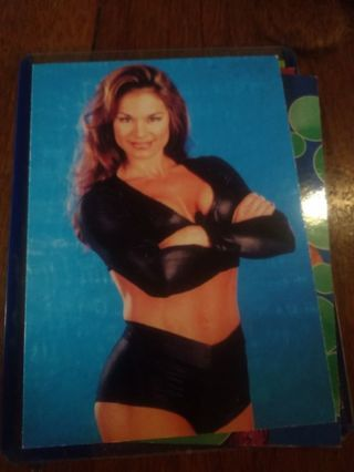 Wwe Ivory 8 card lot