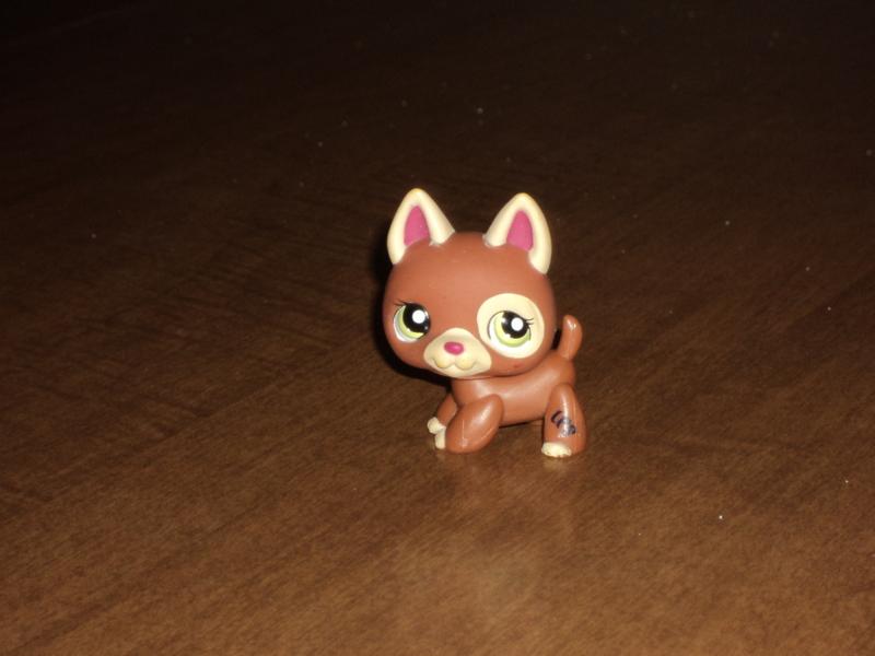 lps brown dog littlest - photo #10