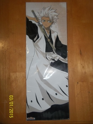 Brand New Bleach Anime Captain Poster Pictures!