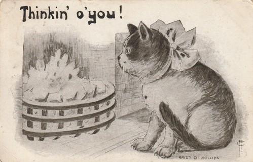 Vintage Used Postcard: 1911 Thinkin' o' you....Cat