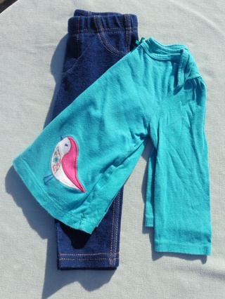 Girl's Long Sleeve and Pants Outfit 12 months - FREE Shipping with GIN