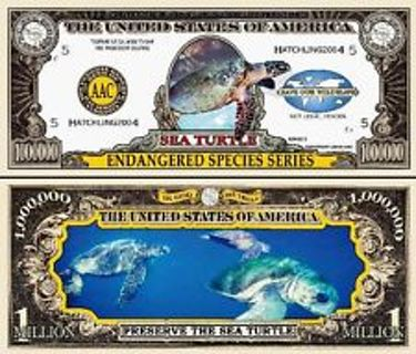 Limited Edition Endangered Species Series Sea Turtle Novelty Dollar Bill In Protective Display Case