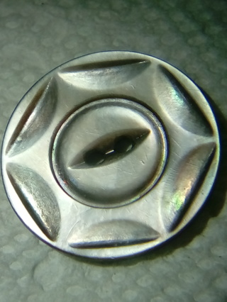 Beautiful Old Shell Button