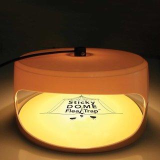 New Seicosy Indoor Sticky Dome Flea Trap + 2 Glue Discs + 6 Pack Of  Glue Discs