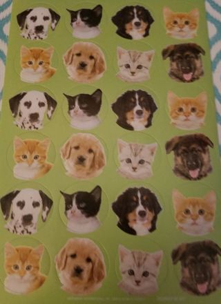 New kitty ,doggy sticker sheet 32 count