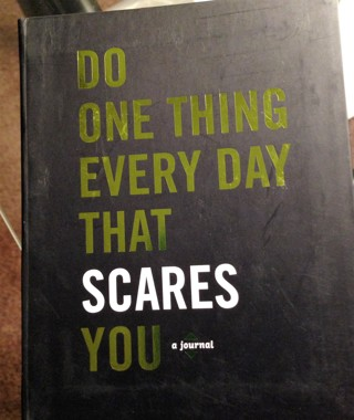 """Brand New Journal: """"Do One Thing Every Day That Scares You""""!! FREE Shipping!"""