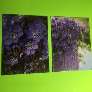 Pretty purple flower magnets!