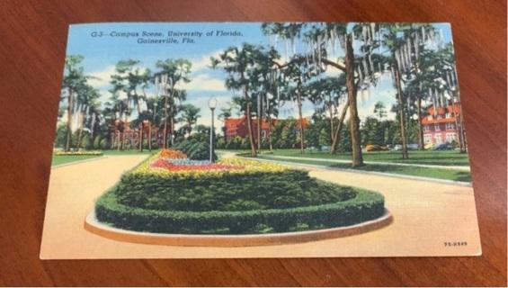 1953 postmarked Postcard Gainesville Florida