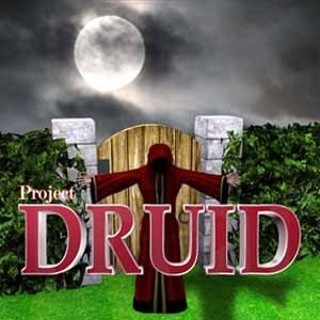 Project Druid - 2D Labyrinth Explorer- (Steam Key)