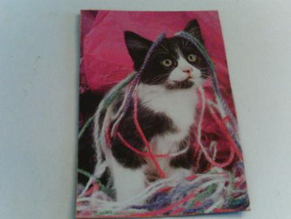 kitten with string- magnet.