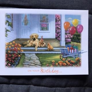 Dogs Birthday Card