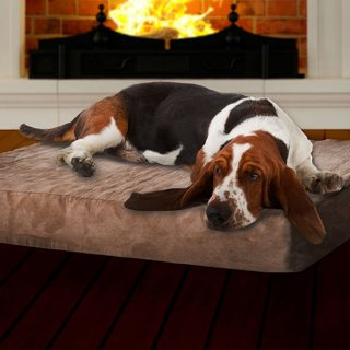 Memory Foam Dog Bed with Removable Cover