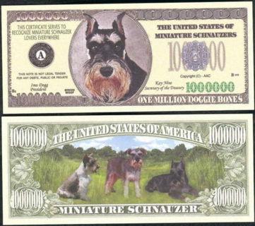Schnauzer Novelty Dollar In High Quality Bill Display Case