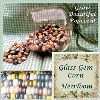 Free Vikki Sgarden Glass Gem Corn Pawnee And Osage Maze