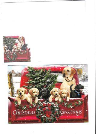 Christmas Card Unused With Envelope Doggies