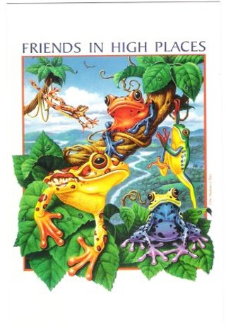 Free Frog Postcards Friends In High Places Colorful Frogs